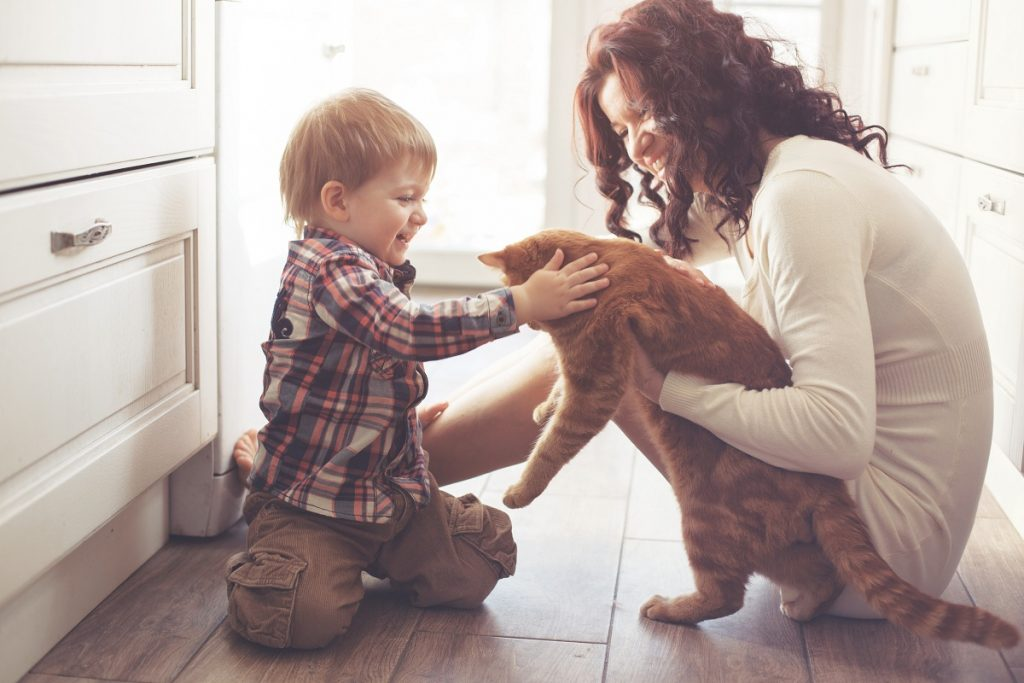 Mother and son playing with cat at home