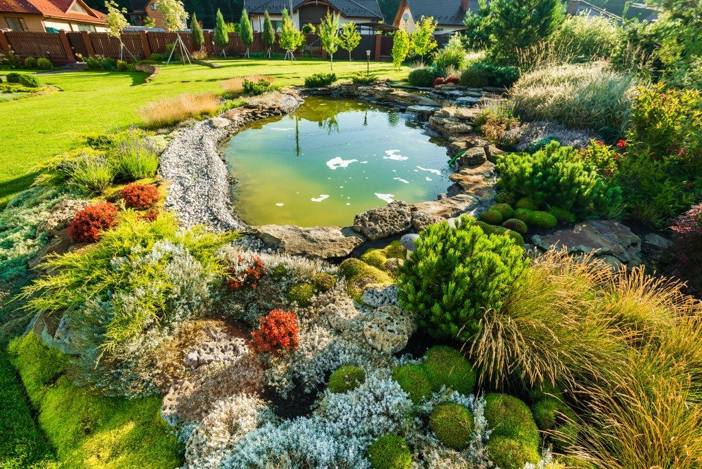 beautiful lawn with pond