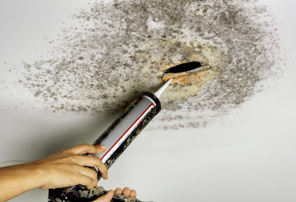 person removing mold in the ceiling