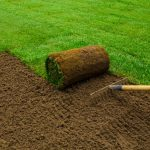 Business in Landscaping: How to Get Started