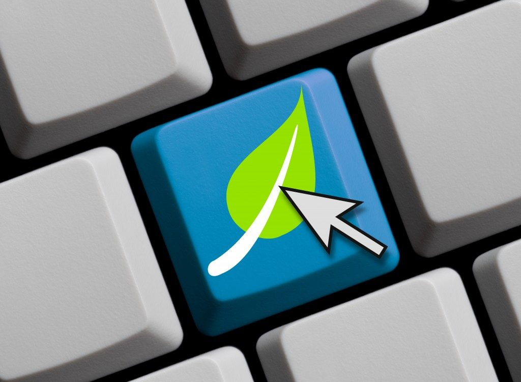computer keyboard with leaf